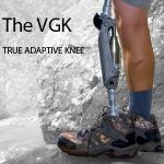 The_VGK_Web_Icon